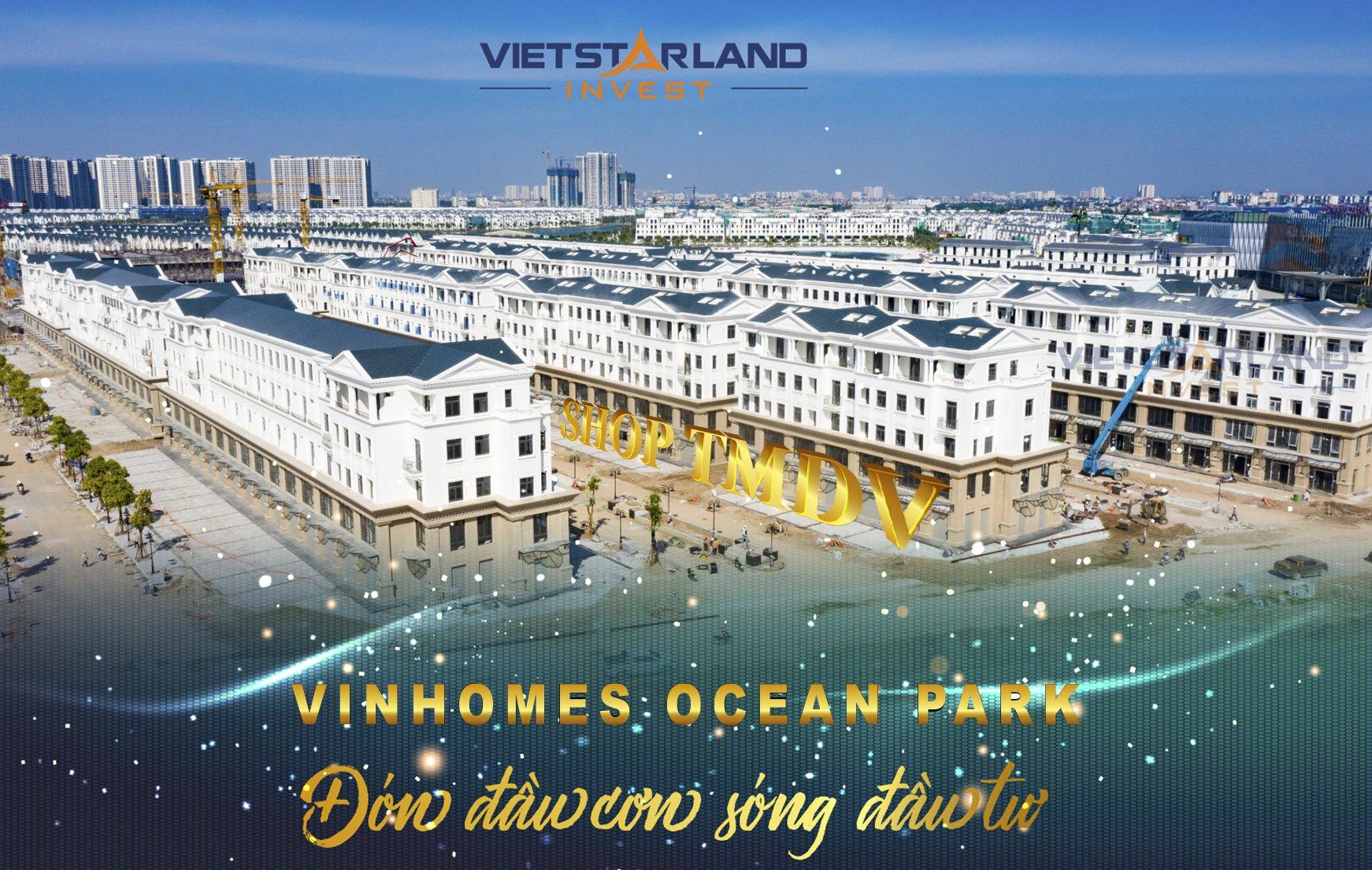 shop thương mại dịch vụ vinhomes ocean park